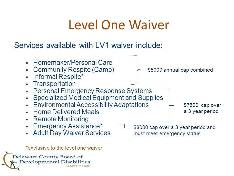 Level One Waiver Services available with LV1 waiver include:
