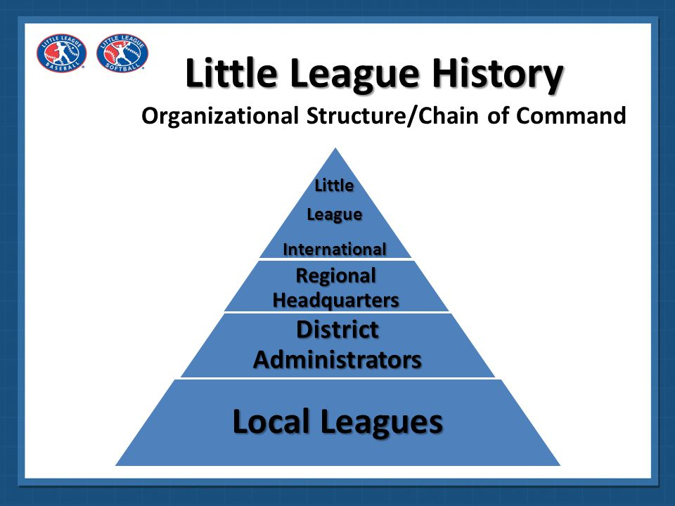 Organizational Structure/Chain of Command
