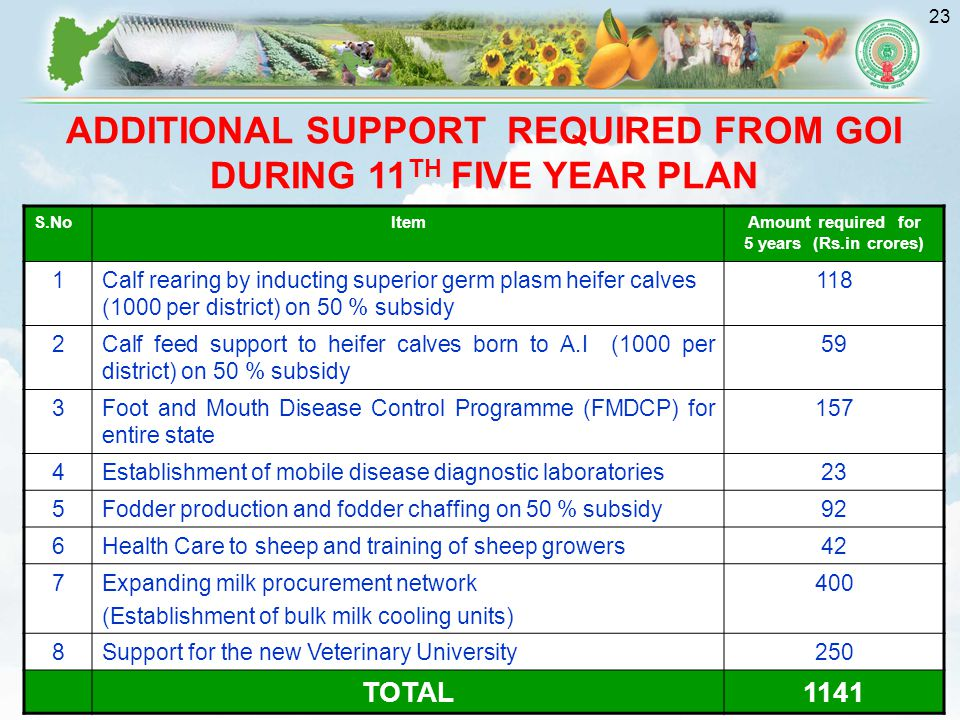 ADDITIONAL SUPPORT REQUIRED FROM GOI DURING 11TH FIVE YEAR PLAN