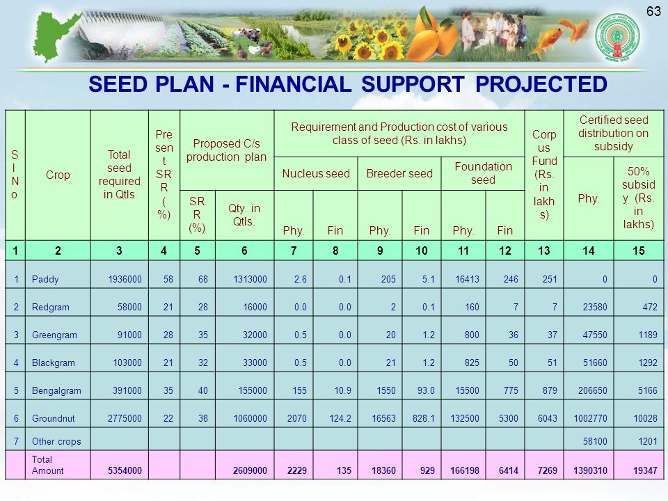 SEED PLAN - FINANCIAL SUPPORT PROJECTED