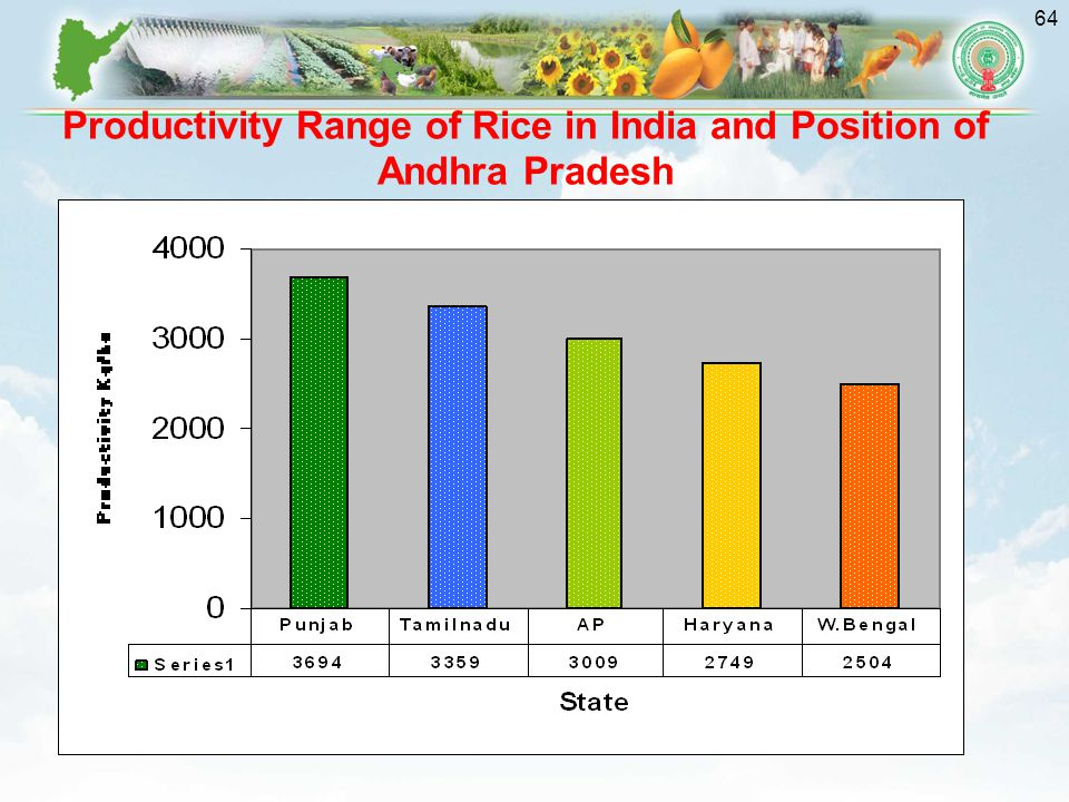 Productivity Range of Rice in India and Position of Andhra Pradesh