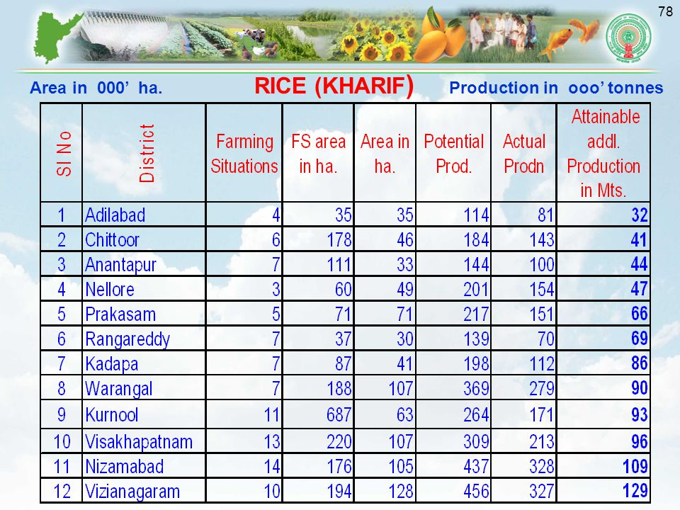 RICE (KHARIF) Area in 000' ha. Production in ooo' tonnes