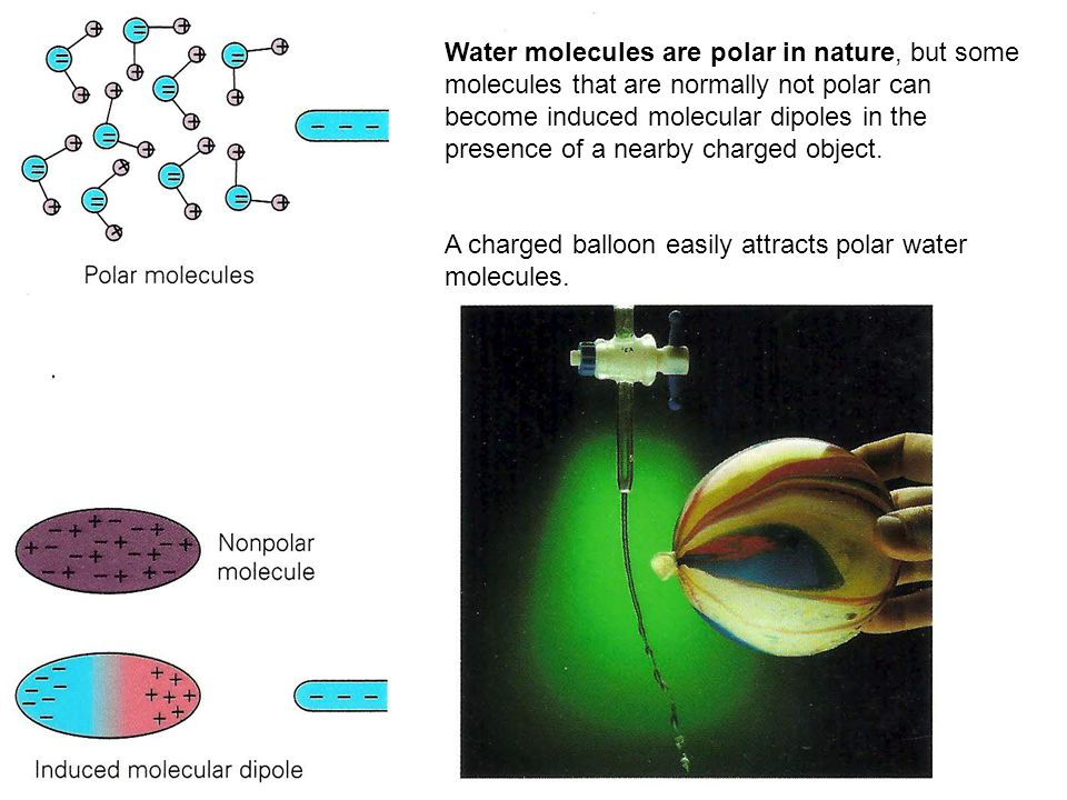 Water molecules are polar in nature, but some molecules that are normally not polar can become induced molecular dipoles in the presence of a nearby charged object.