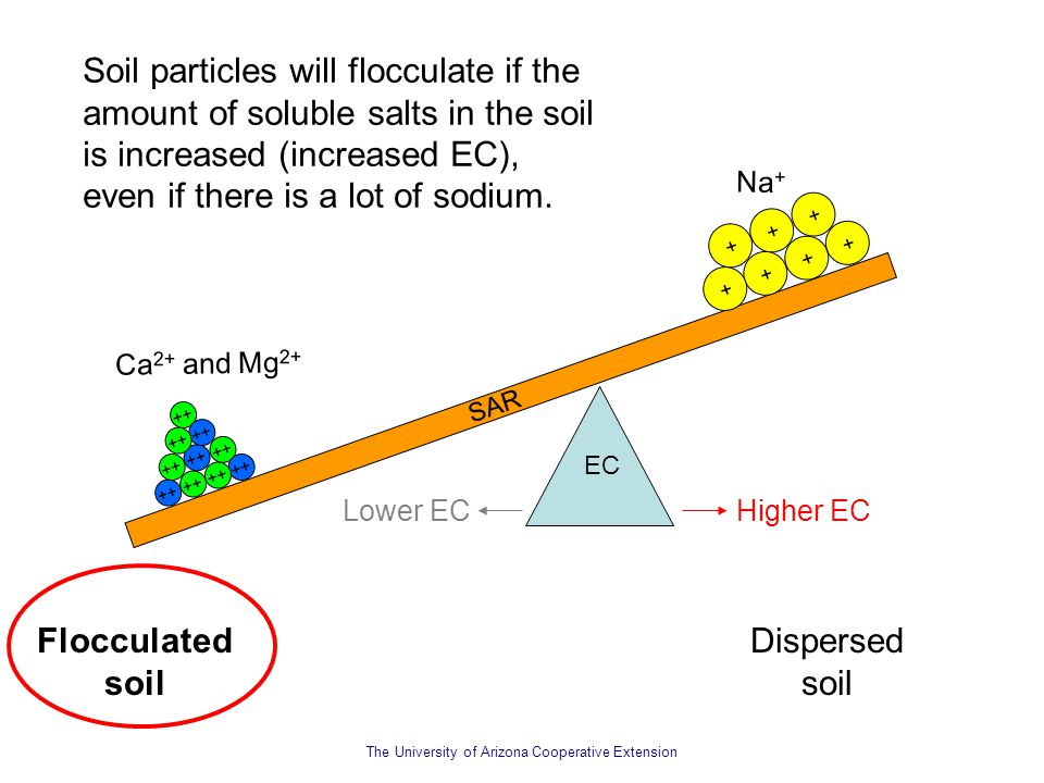 Soil particles will flocculate if the amount of soluble salts in the soil is increased (increased EC), even if there is a lot of sodium.