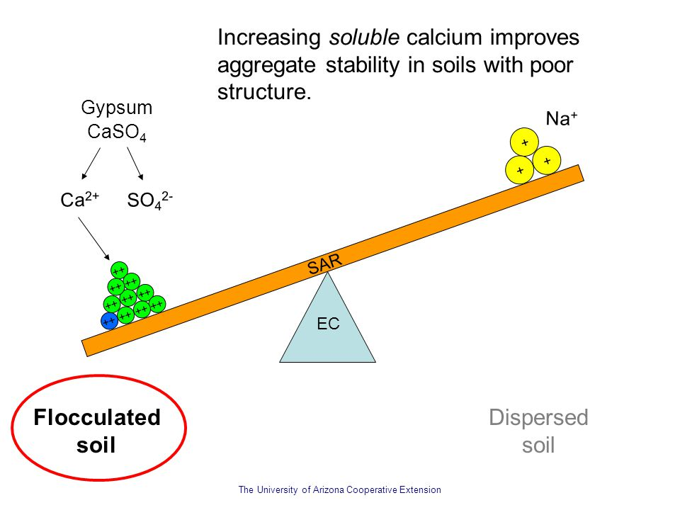 Increasing soluble calcium improves aggregate stability in soils with poor structure.