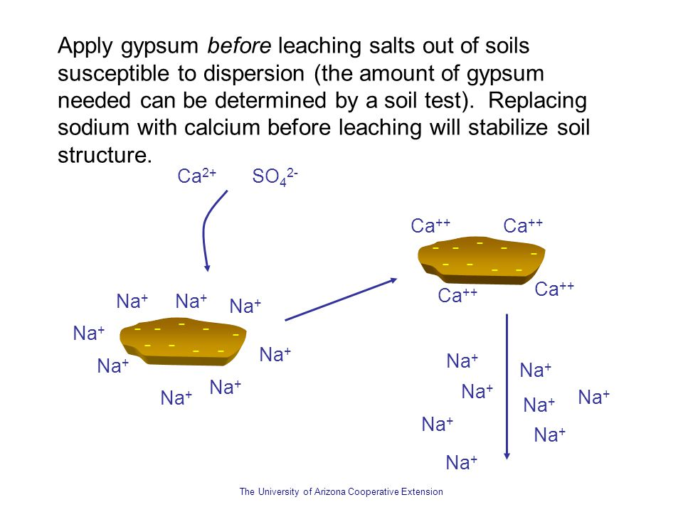 Soil structure the roles of sodium and salts ppt video for Soil structure