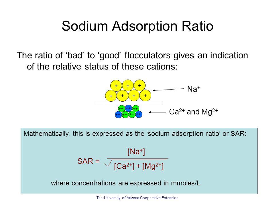 Sodium Adsorption Ratio