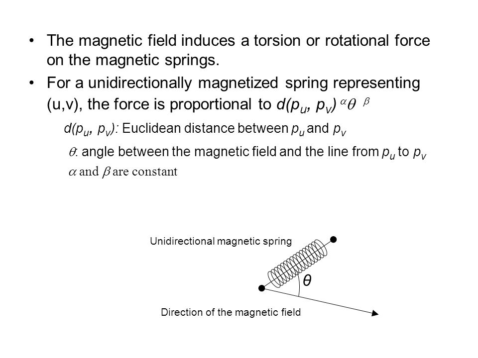 The magnetic field induces a torsion or rotational force on the magnetic springs.