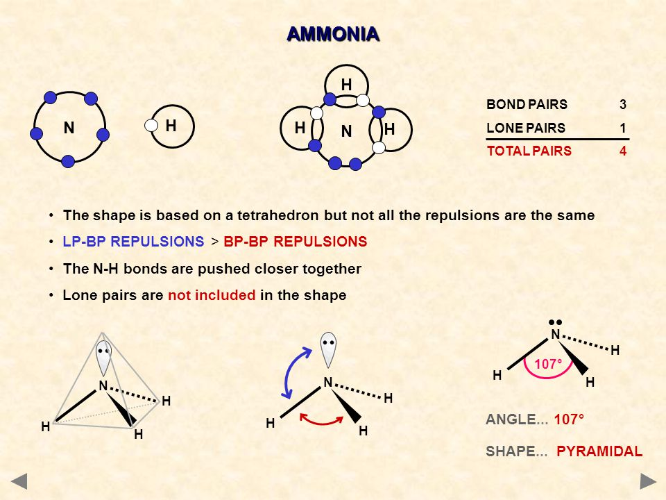 AMMONIA N. H. N. BOND PAIRS 3. LONE PAIRS 1. TOTAL PAIRS 4. H. The shape is based on a tetrahedron but not all the repulsions are the same.