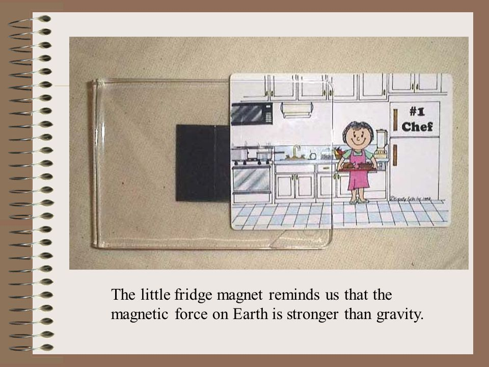 The little fridge magnet reminds us that the magnetic force on Earth is stronger than gravity.