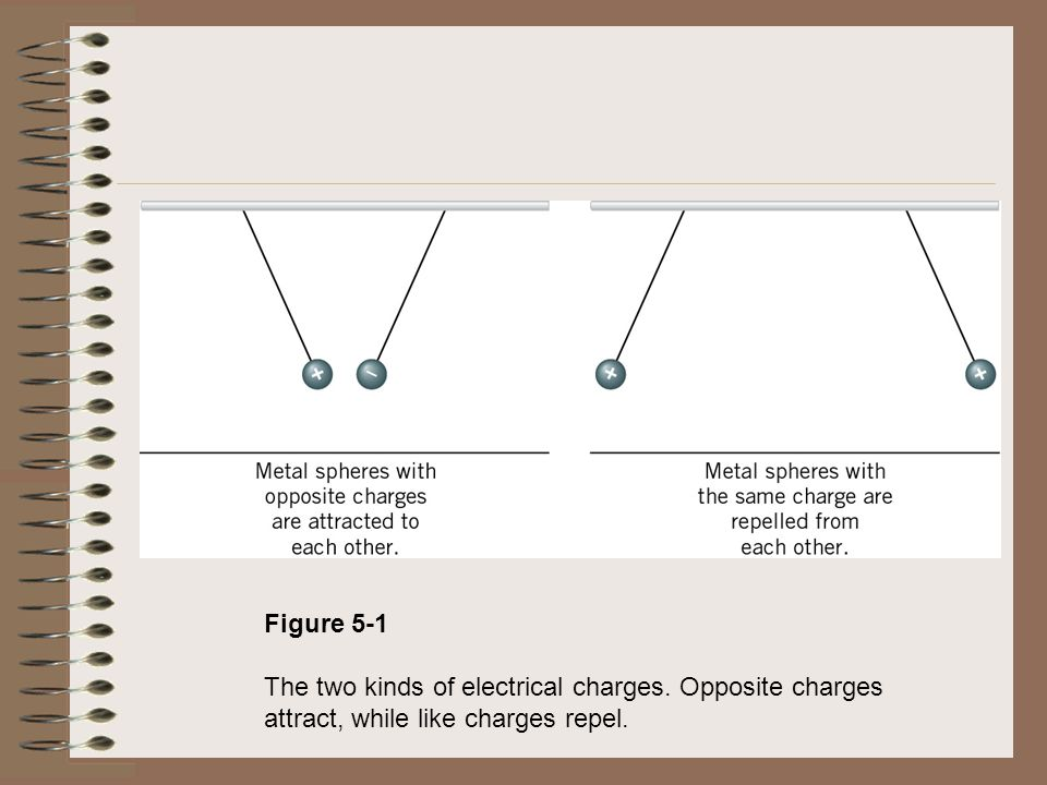 Figure 5-1 The two kinds of electrical charges. Opposite charges attract, while like charges repel.