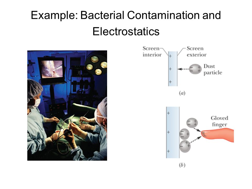 Example: Bacterial Contamination and Electrostatics