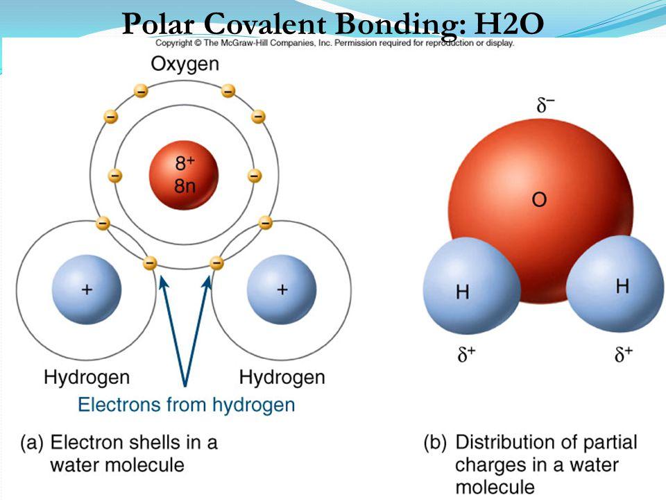 Polar Covalent Bonding: H2O