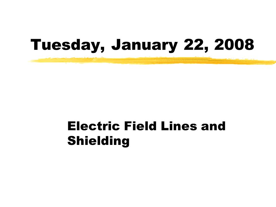 Electric Field Lines and Shielding