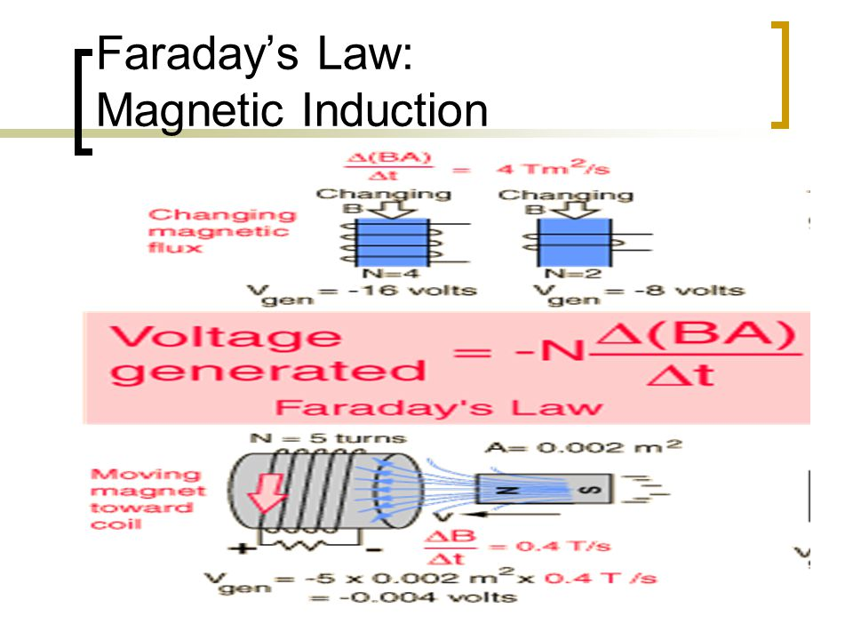 Faraday's Law: Magnetic Induction