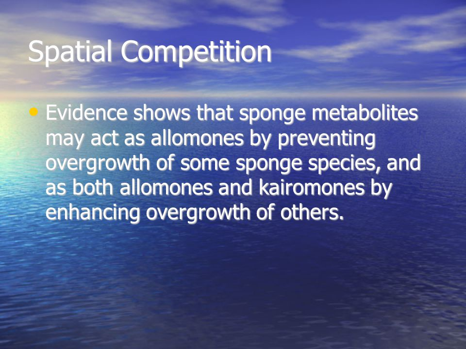 Spatial Competition