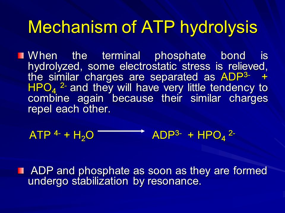 Mechanism of ATP hydrolysis