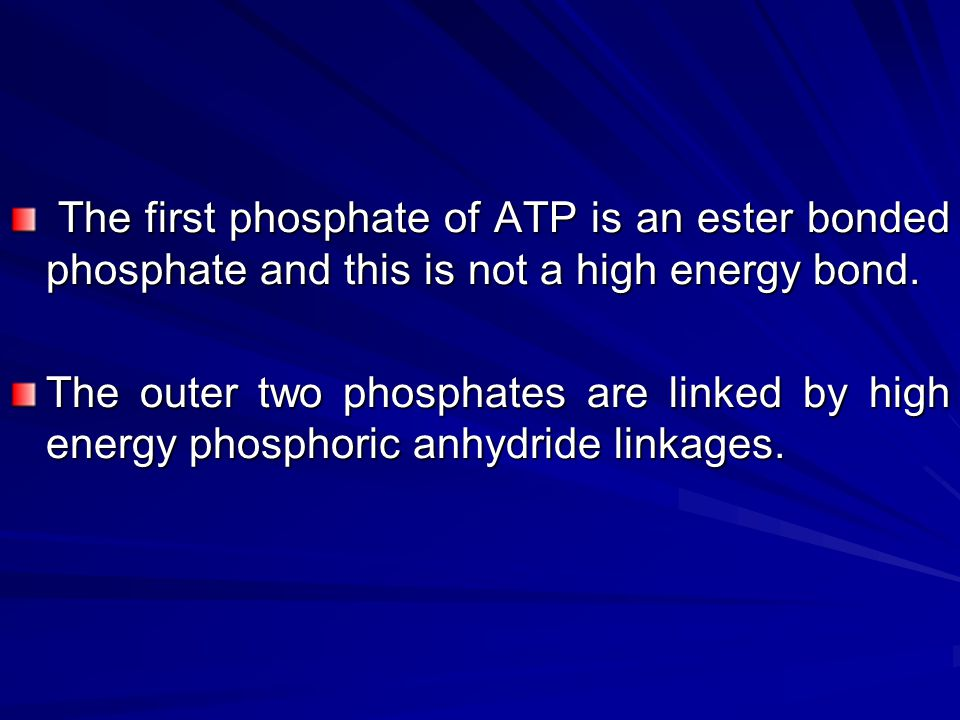 The first phosphate of ATP is an ester bonded phosphate and this is not a high energy bond.