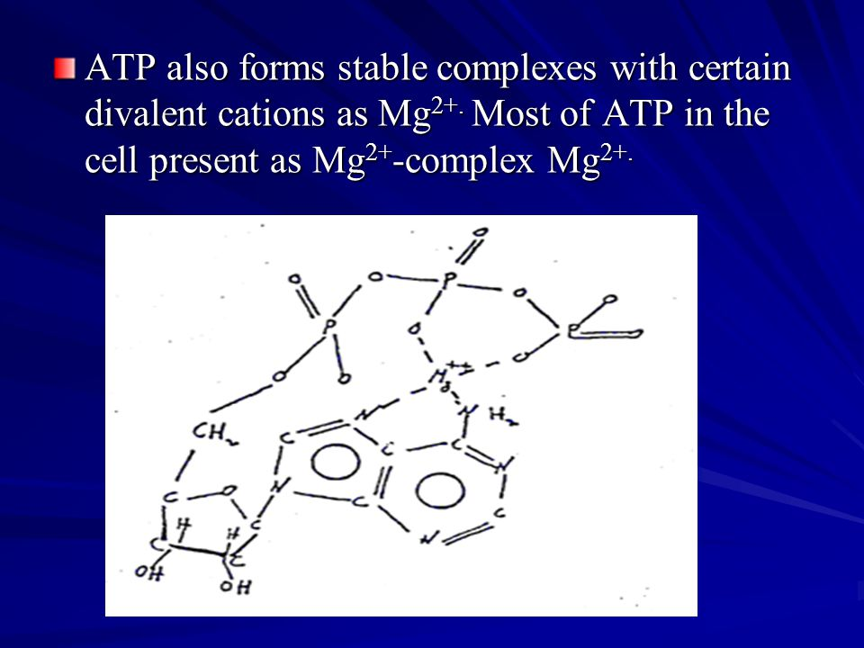 ATP also forms stable complexes with certain divalent cations as Mg2+