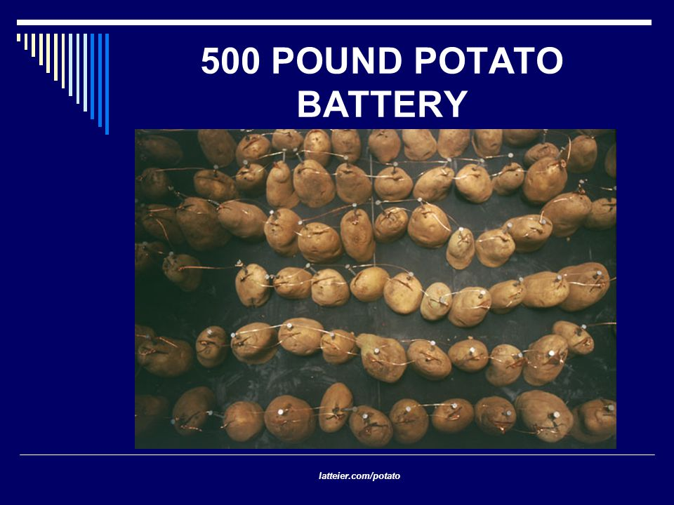 500 POUND POTATO BATTERY latteier.com/potato