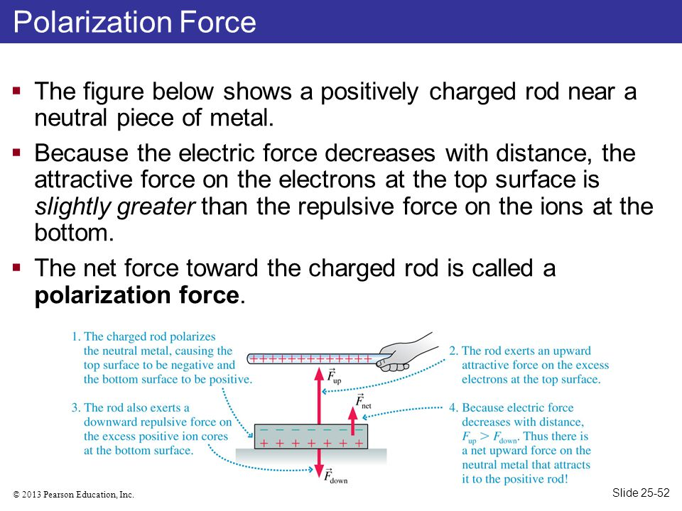 Polarization Force The figure below shows a positively charged rod near a neutral piece of metal.