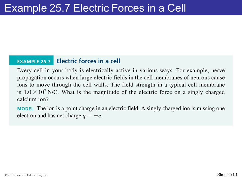 Example 25.7 Electric Forces in a Cell