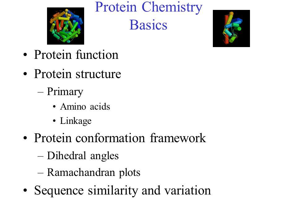 Protein Chemistry Basics