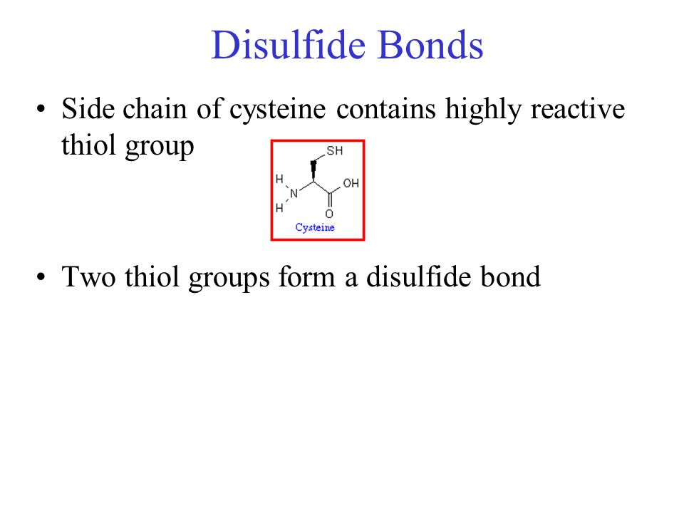 Disulfide Bonds Side chain of cysteine contains highly reactive thiol group.
