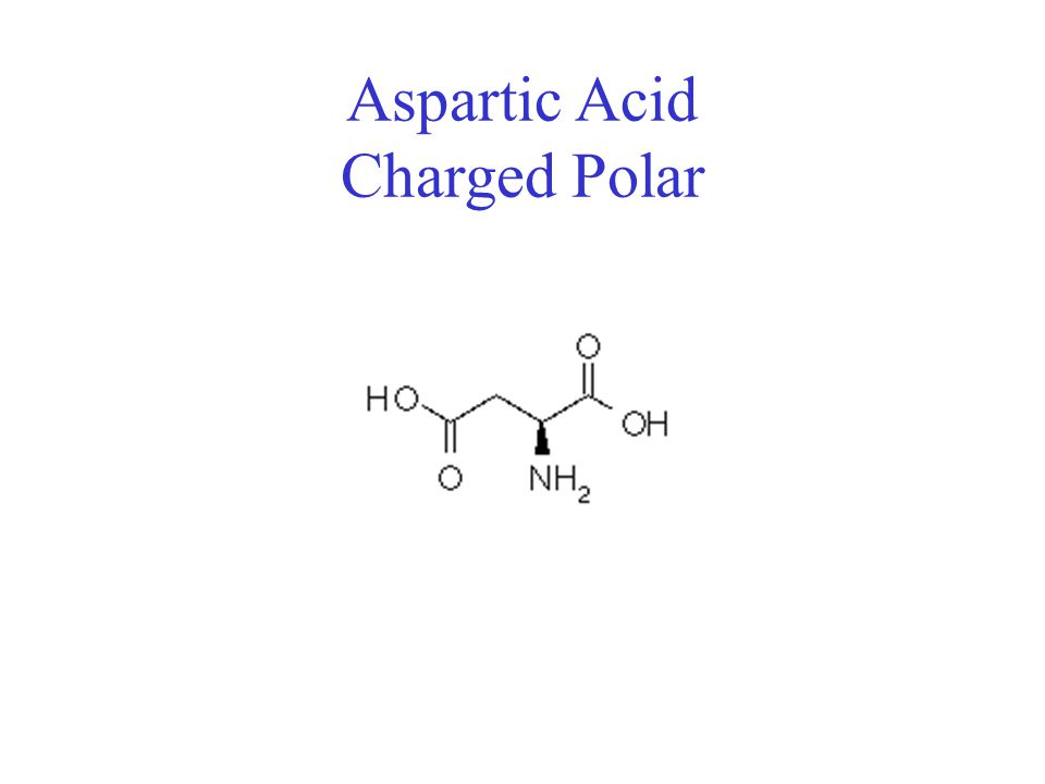 Aspartic Acid Charged Polar