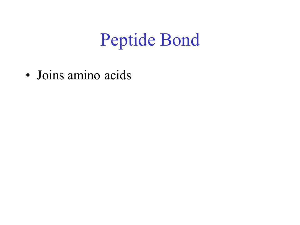 Peptide Bond Joins amino acids