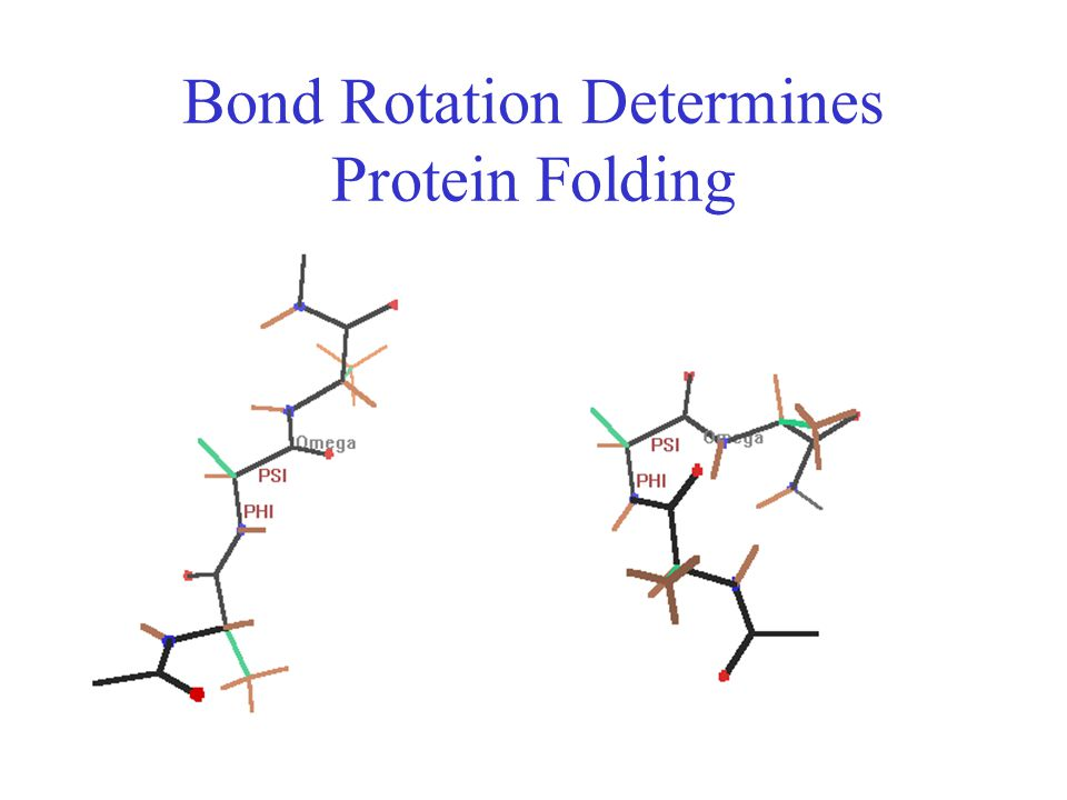 Bond Rotation Determines Protein Folding