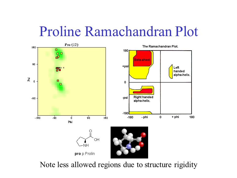 Proline Ramachandran Plot