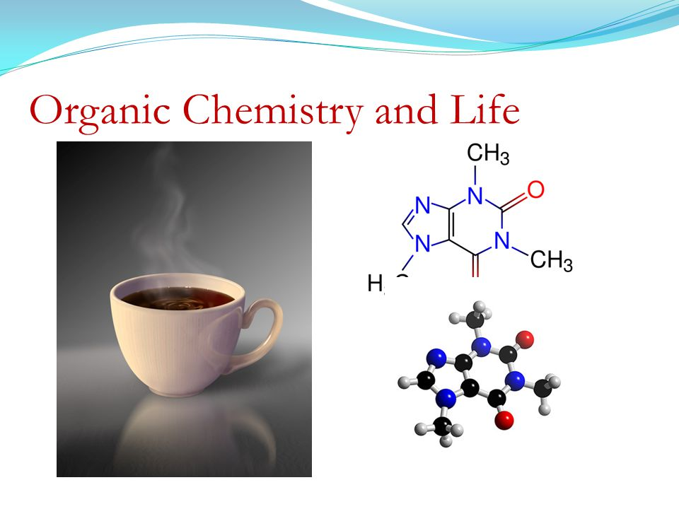 Organic Chemistry and Life