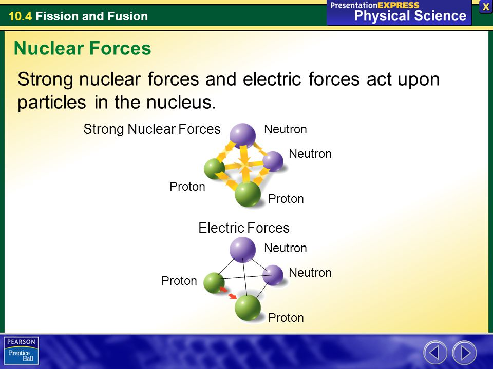 Nuclear Forces Strong nuclear forces and electric forces act upon particles in the nucleus. Strong Nuclear Forces.