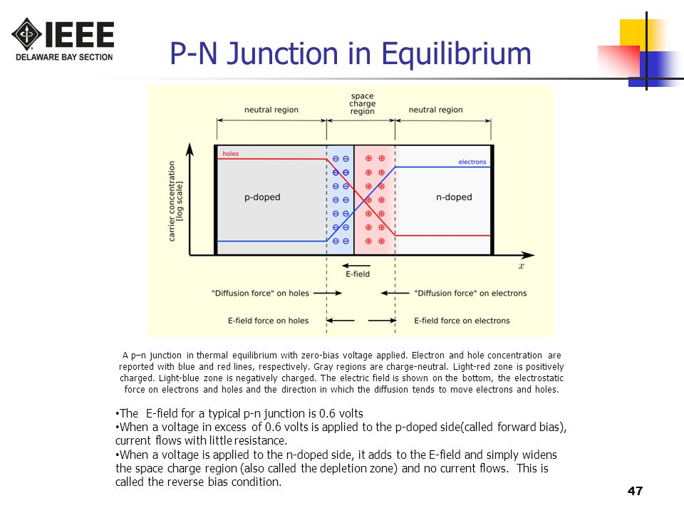 P-N Junction in Equilibrium
