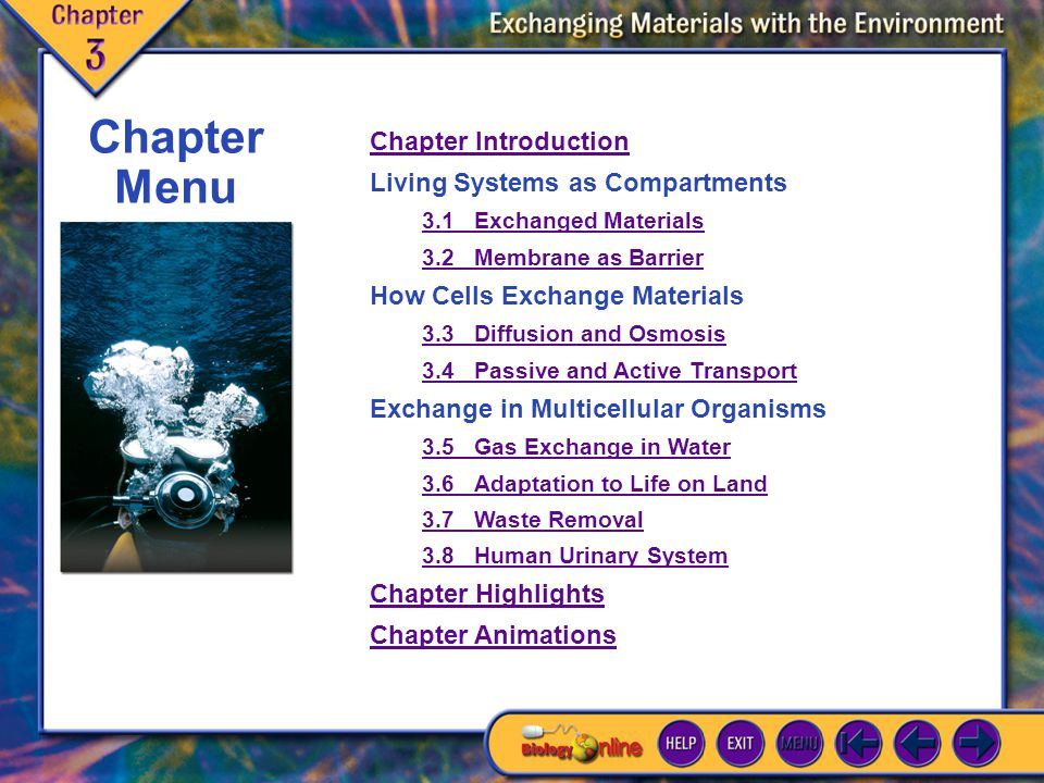 Chapter Menu Chapter Introduction Living Systems as Compartments