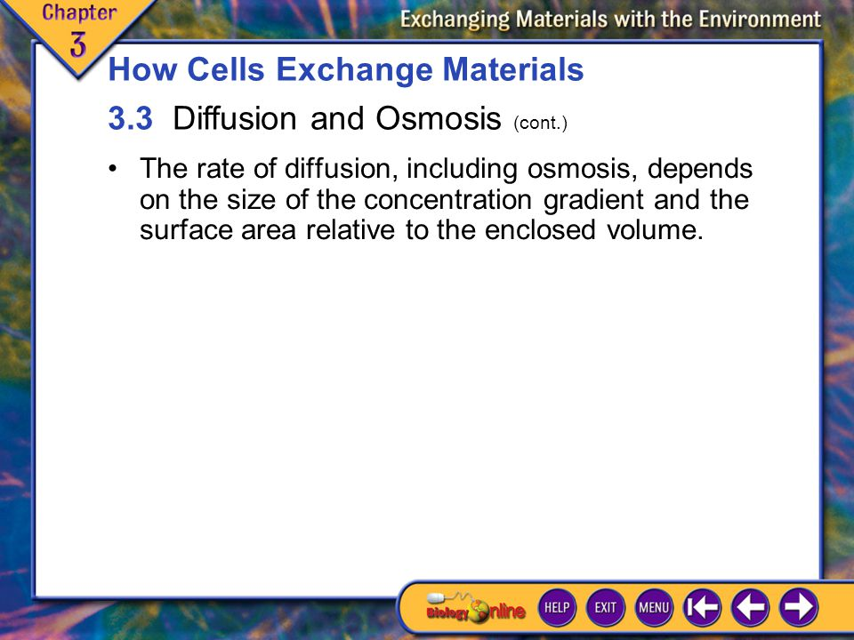 How Cells Exchange Materials 3.3 Diffusion and Osmosis (cont.)