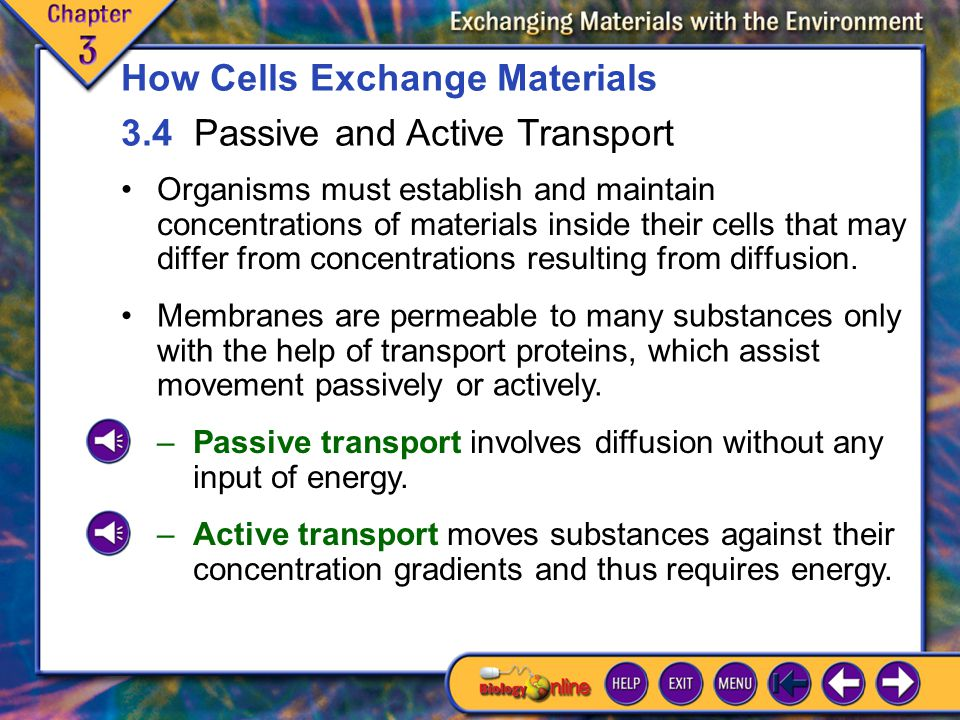3.4 Passive and Active Transport 1