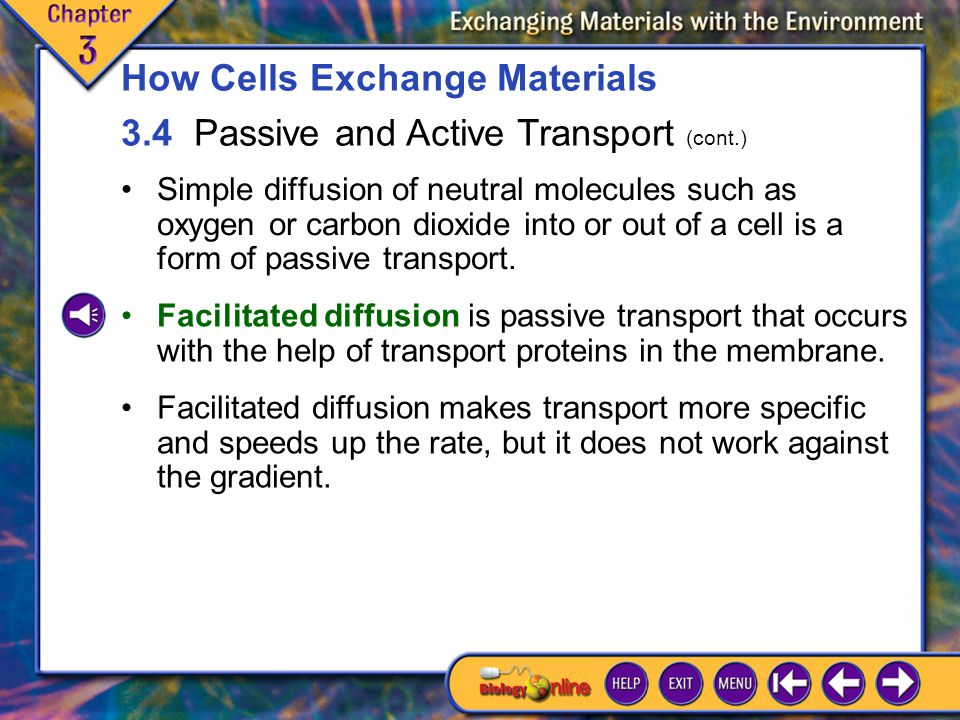 3.4 Passive and Active Transport 2