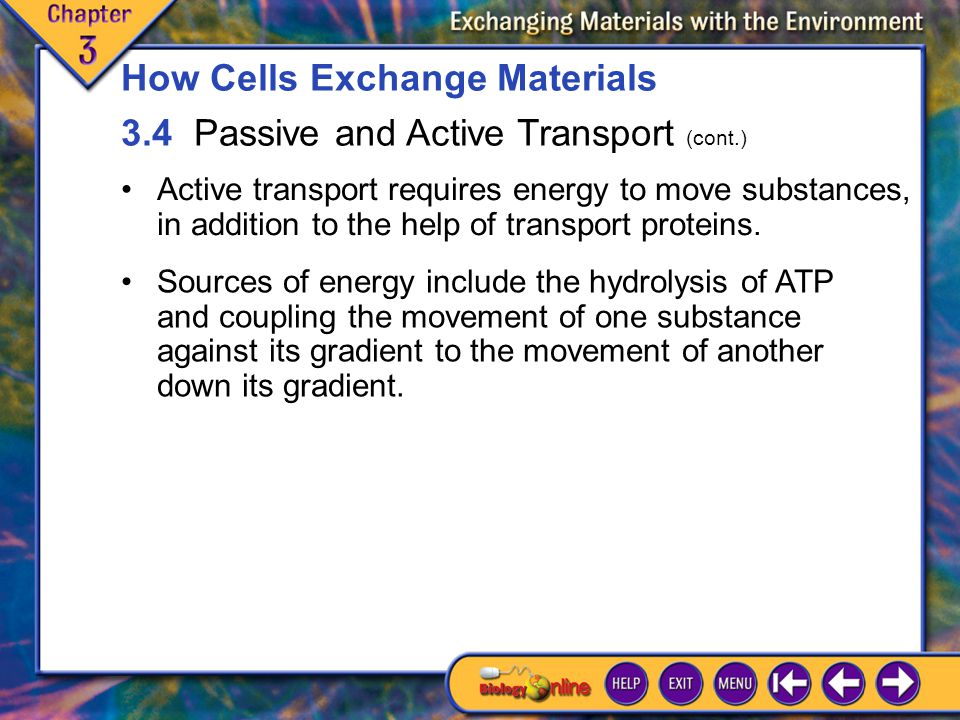 3.4 Passive and Active Transport 3