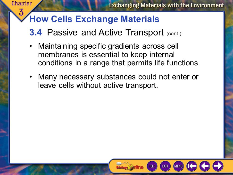 3.4 Passive and Active Transport 4