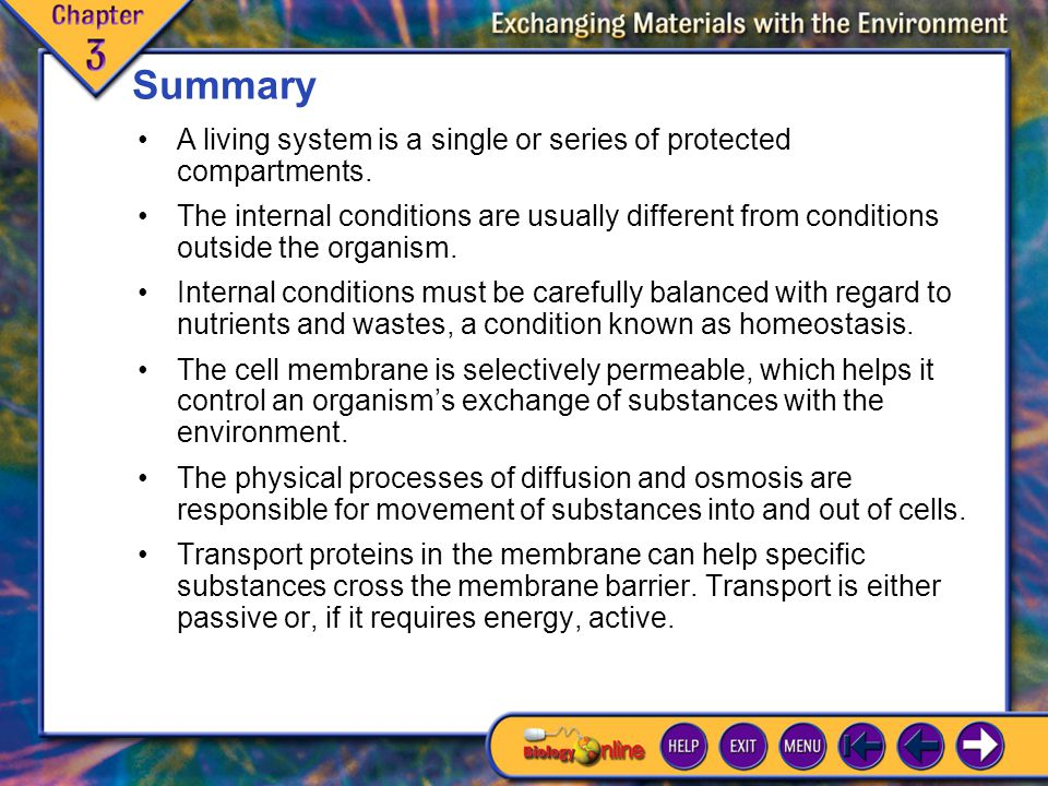 Summary A living system is a single or series of protected compartments.