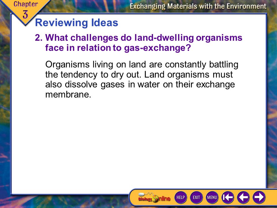 Reviewing Ideas 2. What challenges do land-dwelling organisms face in relation to gas-exchange