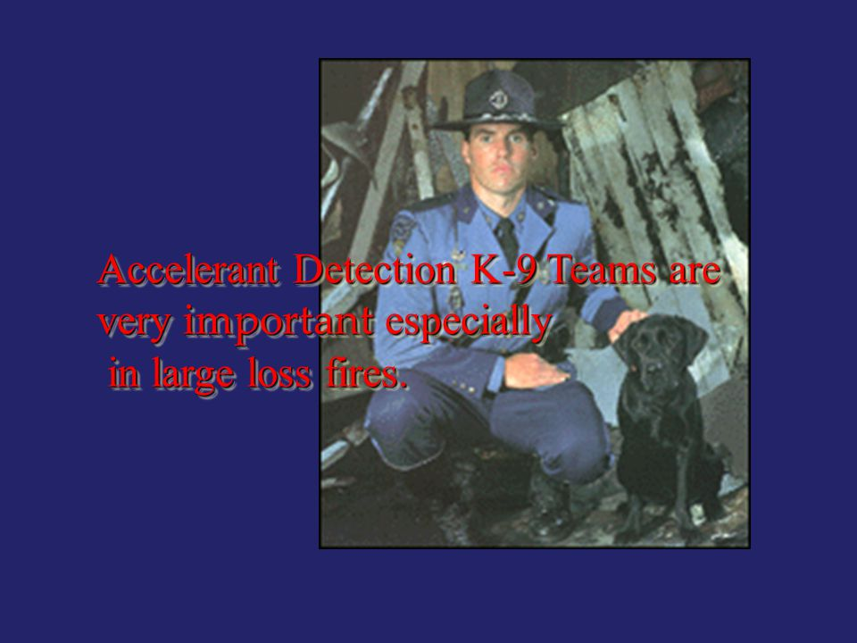 Accelerant Detection K-9 Teams are