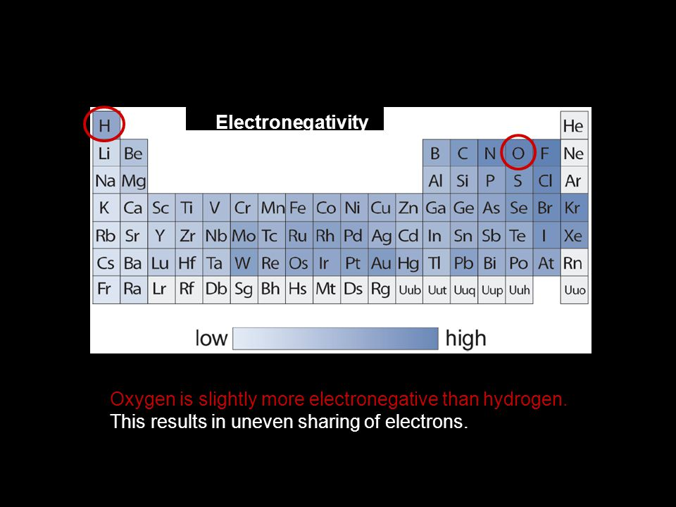 Oxygen is slightly more electronegative than hydrogen.