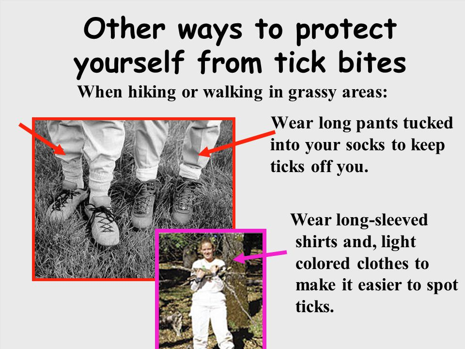 Other ways to protect yourself from tick bites