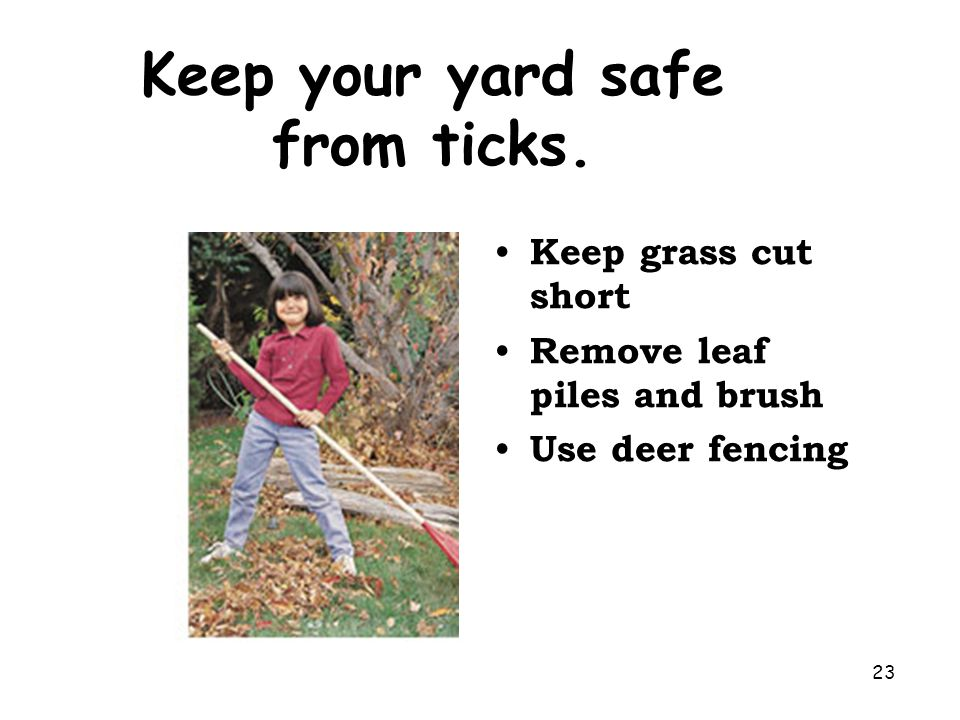 Keep your yard safe from ticks.