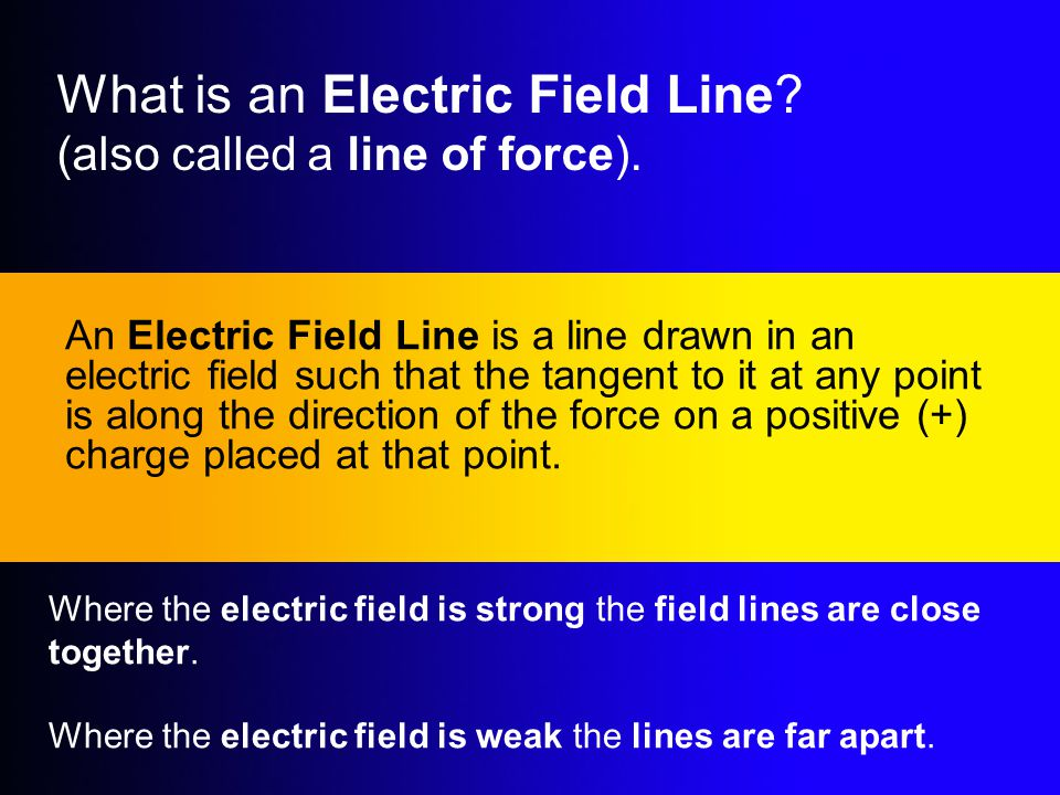 What is an Electric Field Line