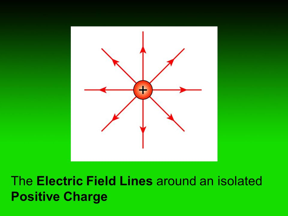 The Electric Field Lines around an isolated Positive Charge