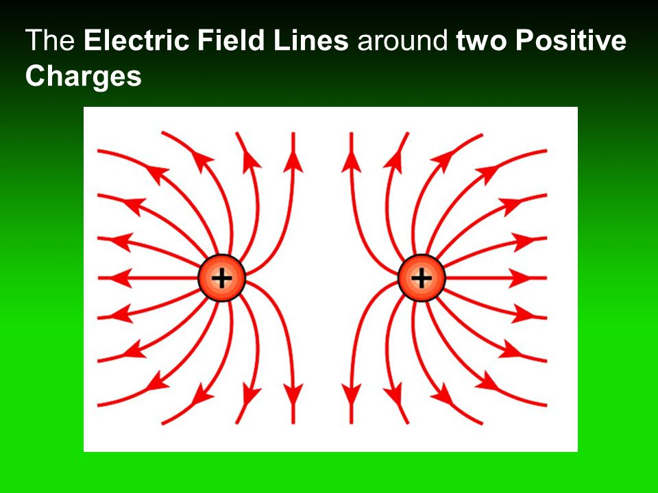 The Electric Field Lines around two Positive Charges